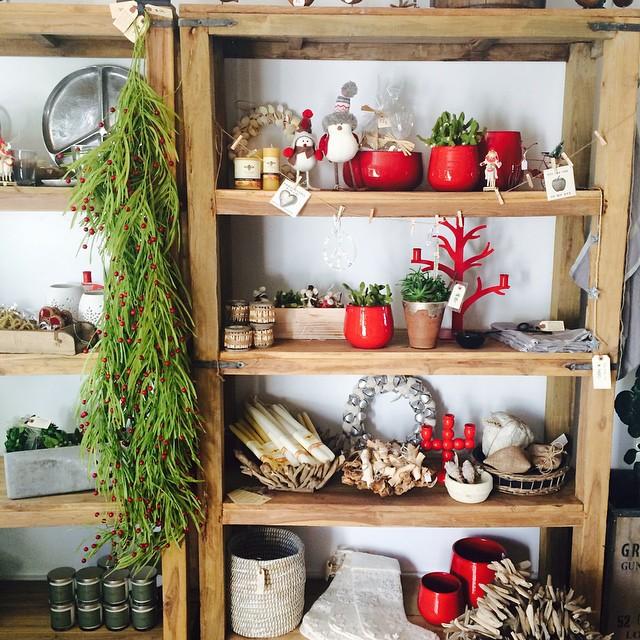 Molly Wood Garden Design outdoor 394248_400832813317490_168773987_n molly wood garden design Molly Wood Garden Design_holiday